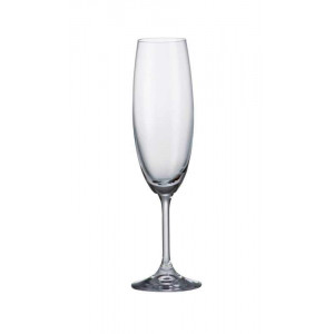 Чаши за шампанско 220 ml. - Lara  Bohemia